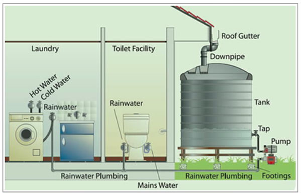 Sustainable Water Usage Around The Home